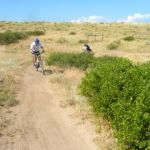 mountain bike riders on single track trail