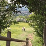England-trails-9