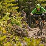 bike rider demonstrating Mountain Biking Skills