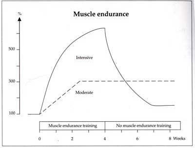 Två olika upplägg för att träna upp muskeluthållighet. Grafen är tagen från Jens Bangso's bok Fitness Training in Soccer