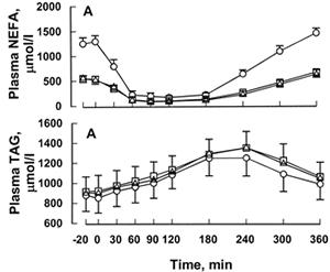 Sänkning av mängden frisatta fettsyror (NEFA) och höjning av fett (triglycerider) efter en måltid och deras tillbakagång till ursprungsvärdena efterföljande timmar.