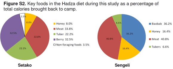 Fördelningen av energikällor hos Hadzagrupperna som inkluderades i den här studien