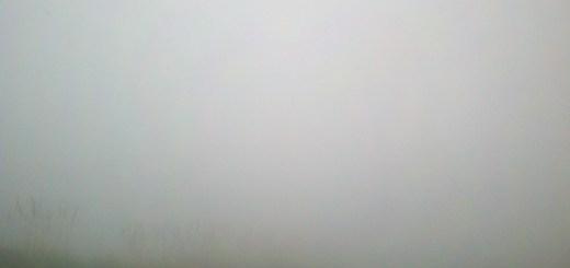 wpid-2012-04-02_15-11-16_487.jpeg