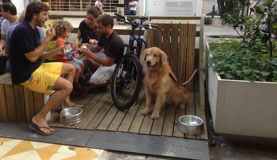 Crianças, bicicletas e cães
