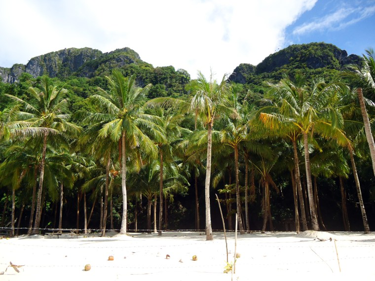My Love-Hate Relationship with El Nido, Philippines - The Travel Lush