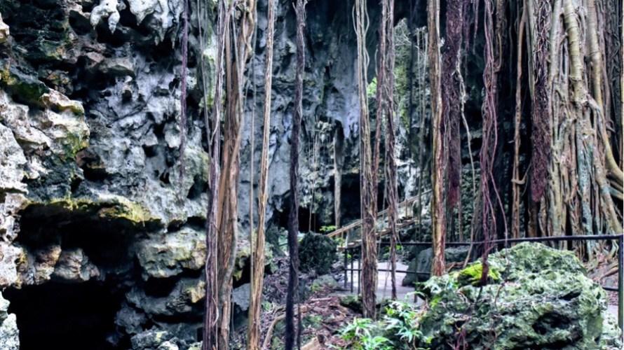 ユインチホテル南城とガンガラーの谷ツアーへ(沖縄家族旅行8日目)