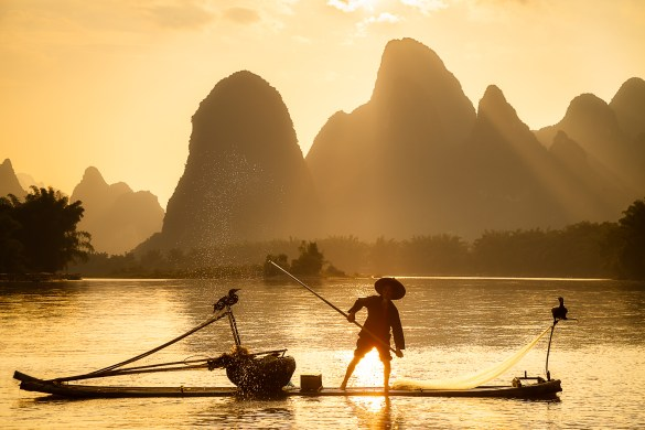 A Chinese fisherman on the Li River splashes water with an oar while Cormorants sit on the boat. Getting a sunset like this doesn't happen every day in this area.