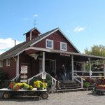 Getting a Taste of Local Flavor at Terhune Orchards