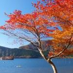 箱根の紅葉!人気おすすめスポットはこちら!