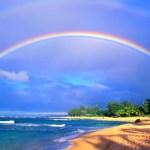 ハワイの天気特集!11月・12月の気温・服装をご紹介。