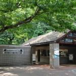 井の頭自然文化園の混雑状況について。井の頭公園の近くの動物園情報をご紹介!