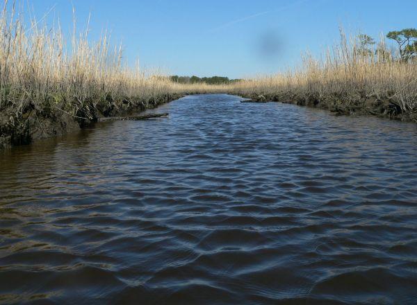 Barren Creek - Wicomico County