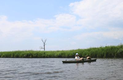 Transquaking River
