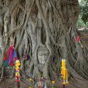 ayutthaya-temples-17