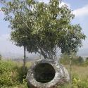 laos-plain-of-jars-11