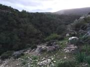 Cyprus adventure: Aphrodite vs. goats