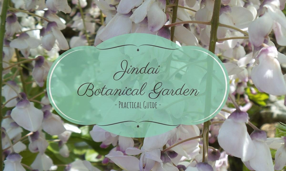 Jindai Botanical Garden wisteria
