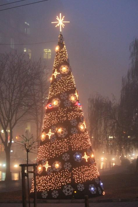 Downtown Christmas Tree; Sofia, Bulgaria; 2011