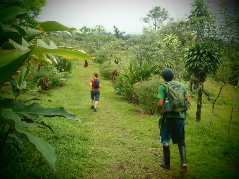First Stage of Hiking; Volcan Arenal, Costa Rica; 2013