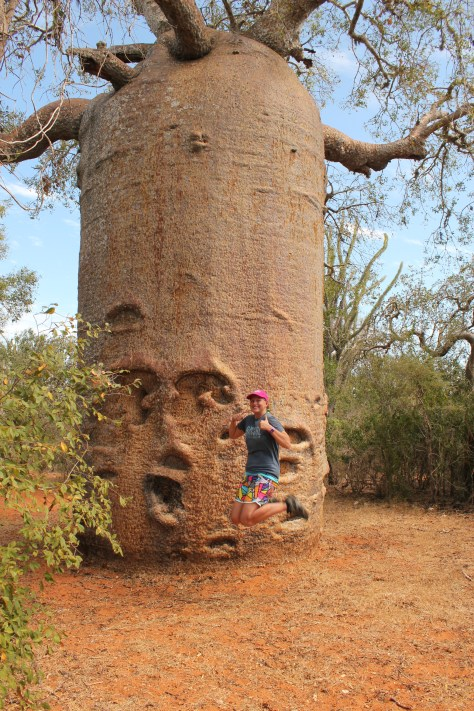 Signature Jumpin' Photograph with 500+ Year Old Baobab Tree; Ifaty, Republic of Madagascar; 2013