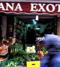 "Paris's Dejean market is known as ""Little Africa"". Photograph: Alamy/Guardian"