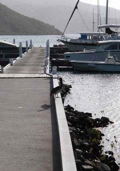 Biras Creek Dock, Virgin Gorda