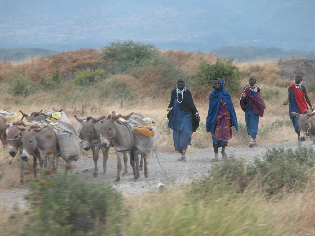Maasai - Tanzania