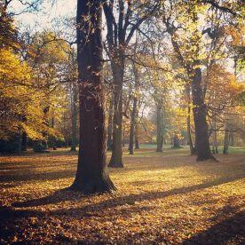 November - Herbst in Leipzig