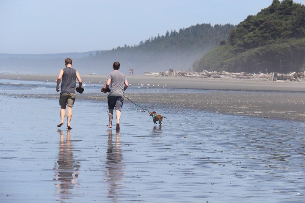 washington-coast-kalaloch-beach-9