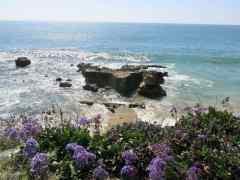 Fabulous Photo Friday: Laguna Beach