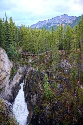 Sunwapta falls road trip