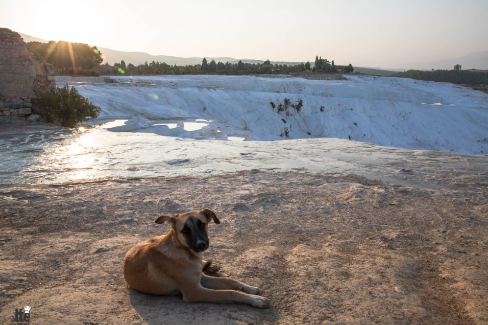 Pamukkale Turkey Sunrise-7