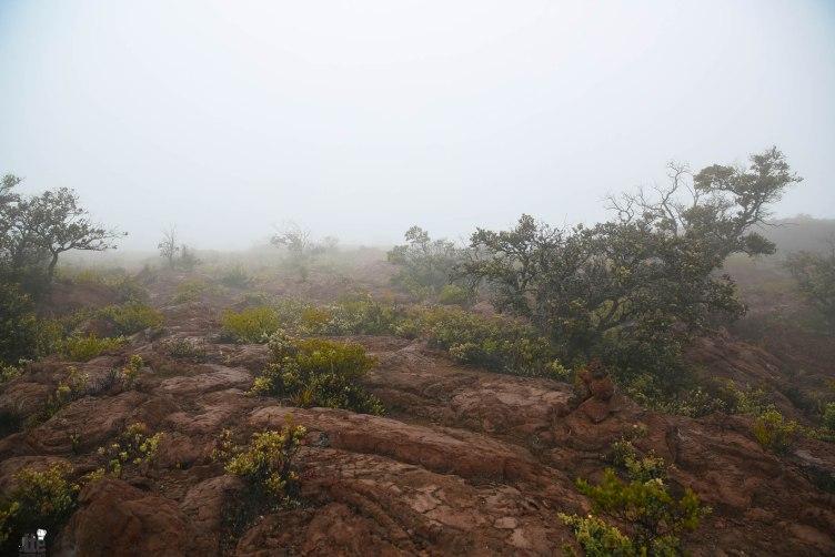 Mauna Loa Hike-13