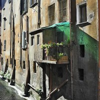 Uncovering the secrets of Bologna