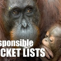 Time to re-think your bucket list and travel more responsibly