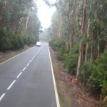 Tenerife Road to Esperanza Forest on TravelXena.com
