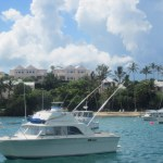 Glass-Bottom-Boat-Bermuda-8