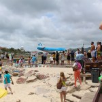 Maho-Beach-KLM-Flight-taking-off-TravelXena-2