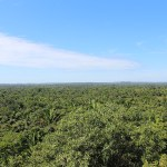 Lamanai_Tree_Canopy_Belize_Travel_Xena_1