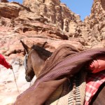 Petra_Jordan_Middle_East_TravelXena_22