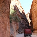 Petra_Jordan_Middle_East_TravelXena_242