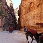 Petra_Jordan_Middle_East_TravelXena_244