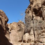 Petra_Jordan_Middle_East_TravelXena_297