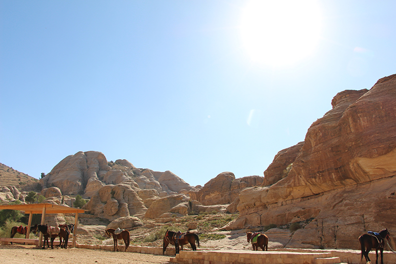 Petra_Jordan_Middle_East_TravelXena_321