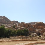 Petra_Jordan_Middle_East_TravelXena_348