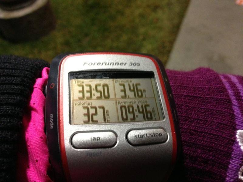 garmin 3 miles