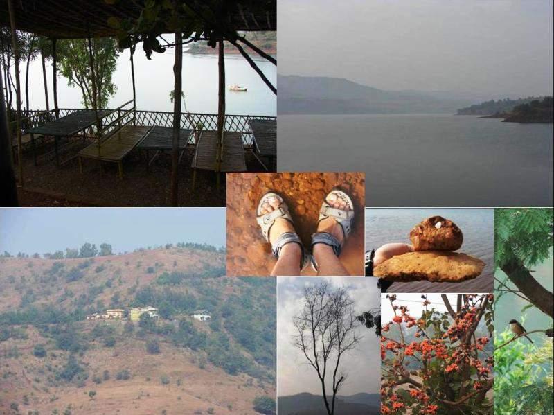 loving nature at Panshet