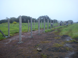 protection compound at at Kaas plateau
