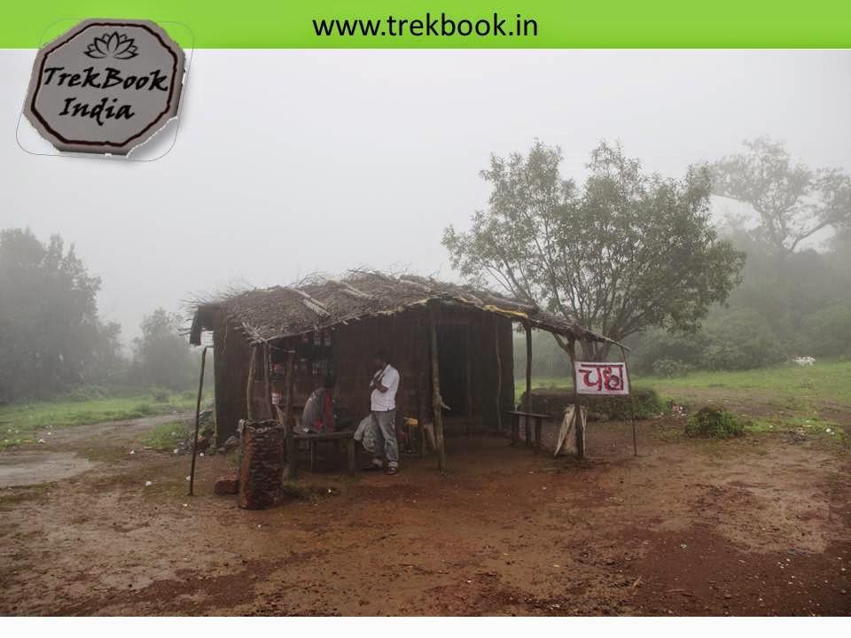 monsoon cup of tea
