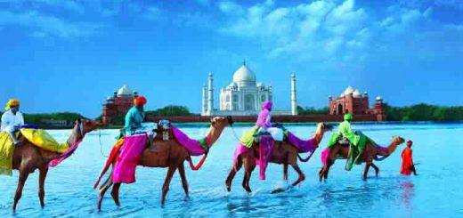 These Places in India will surely win your heart